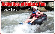Activity of Natures Fun