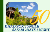 Khaosok Jungle Safari 2 Days 1Night