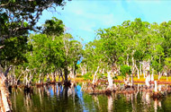 Phrathong or Savannah Island by JC Tour